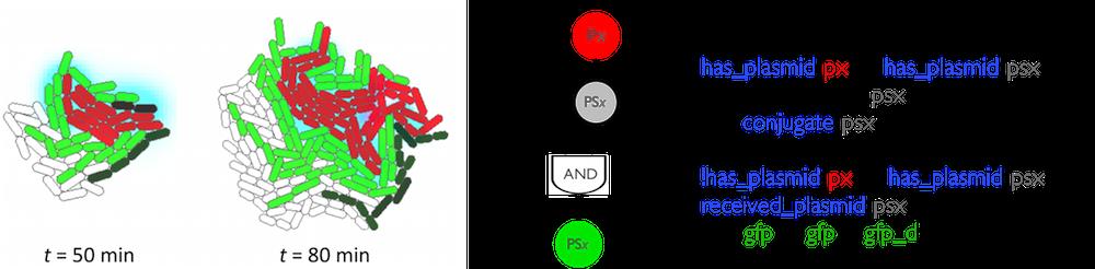 LIA-group-image-2